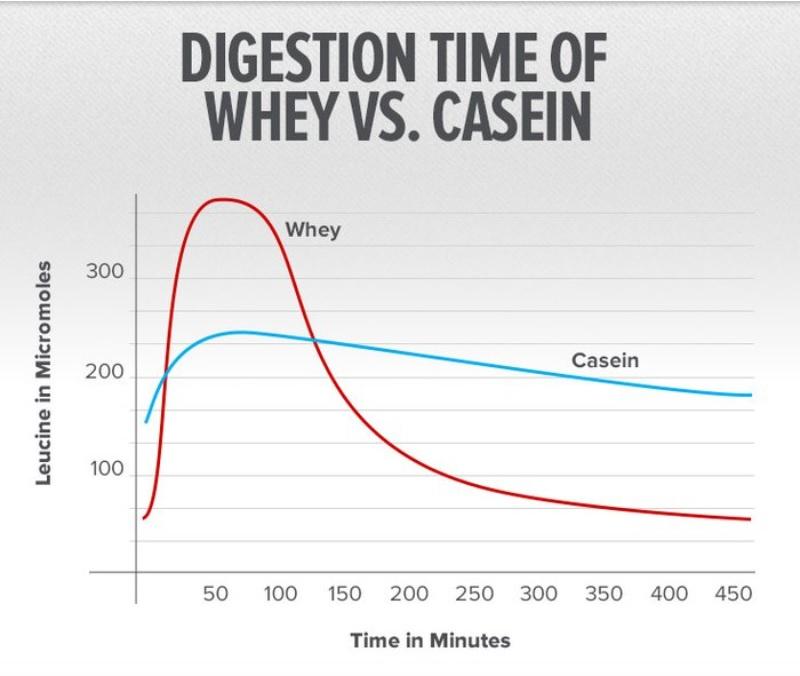 whey vs casein